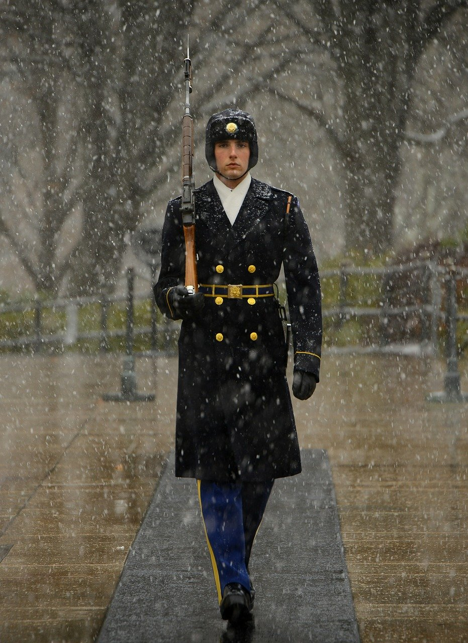 sentinel, tomb of unknown soldier, guard